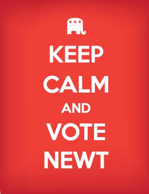 Keep Calm & Vote Newt